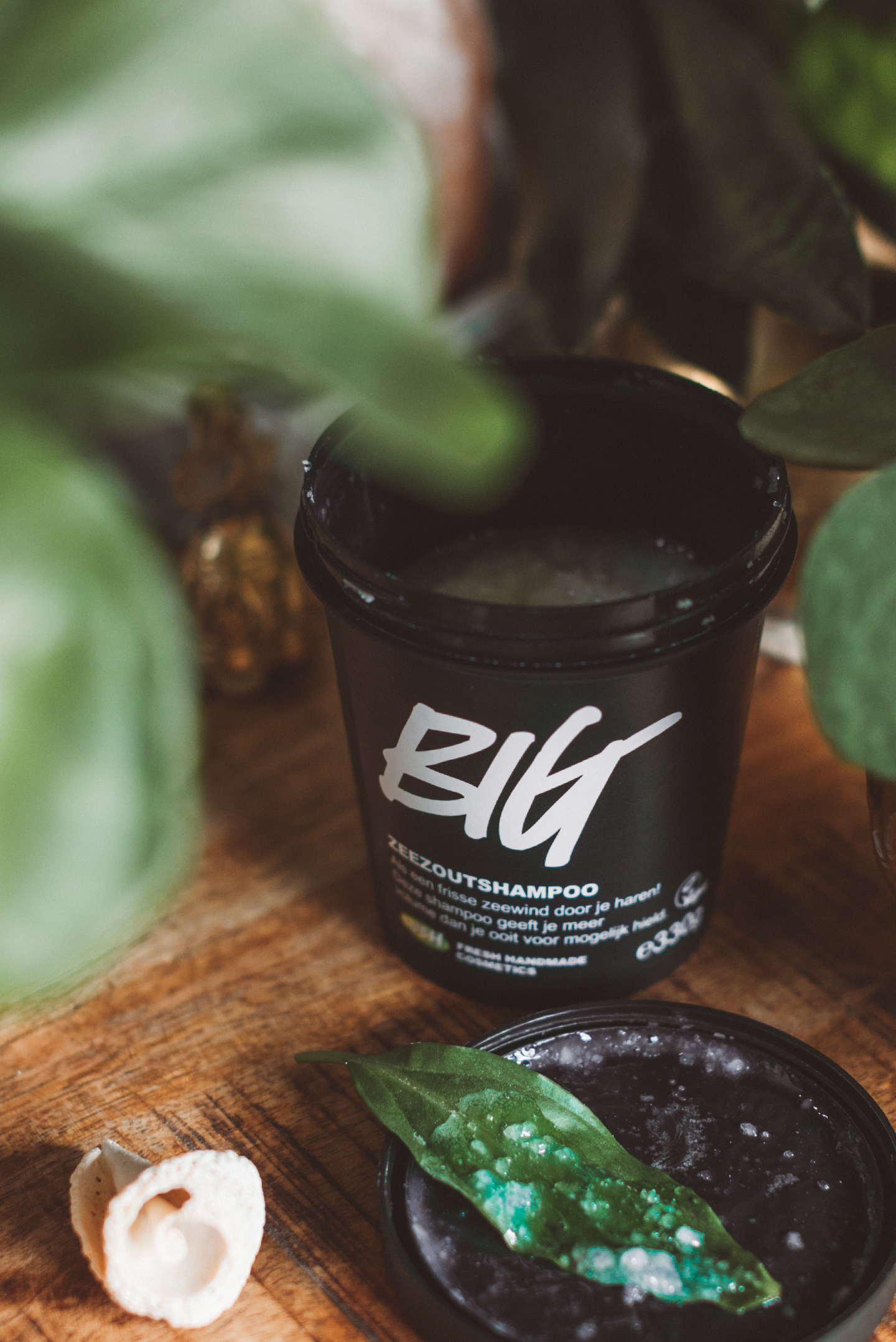 Lush vegan Haircare BIG shampoo