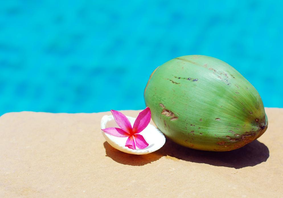 na vakantie update persoonlijk lifestyle by linda kokosnoot blogplanning flower tropical