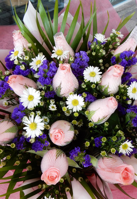 Kuala lumpur flowers