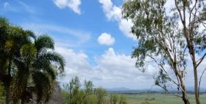 Weekvlog 9 | Roadtrippen door Queensland Australië