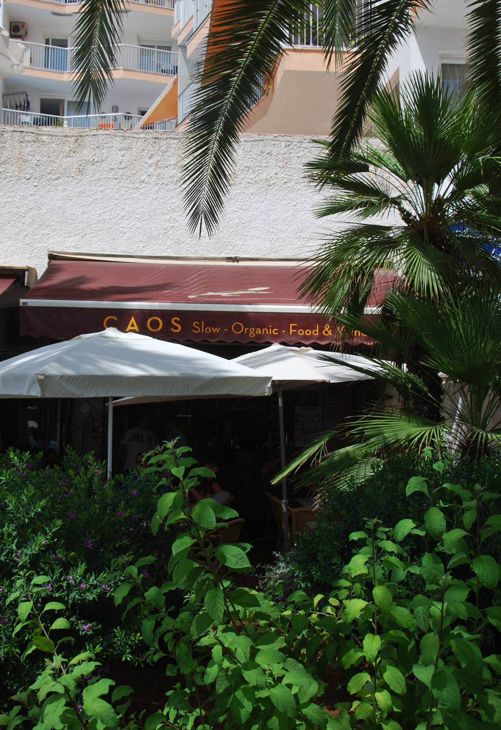 Caos Ibiza slow and organic food santa eularia hotspot review