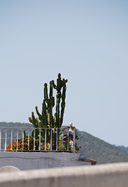 Dalt Vila Eivissa Ibiza