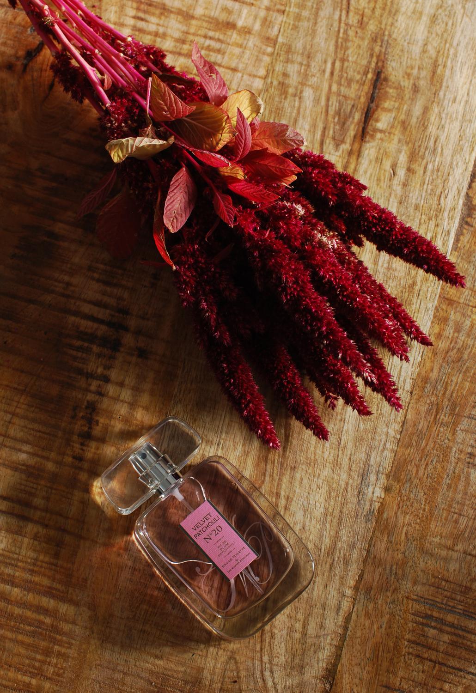 The Master Perfumer Velvet Patchouli N20 nr 20 kruidvat