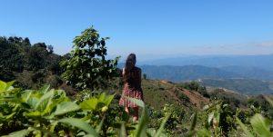 Doi Tung & Myanmar Border | Chiang Rai