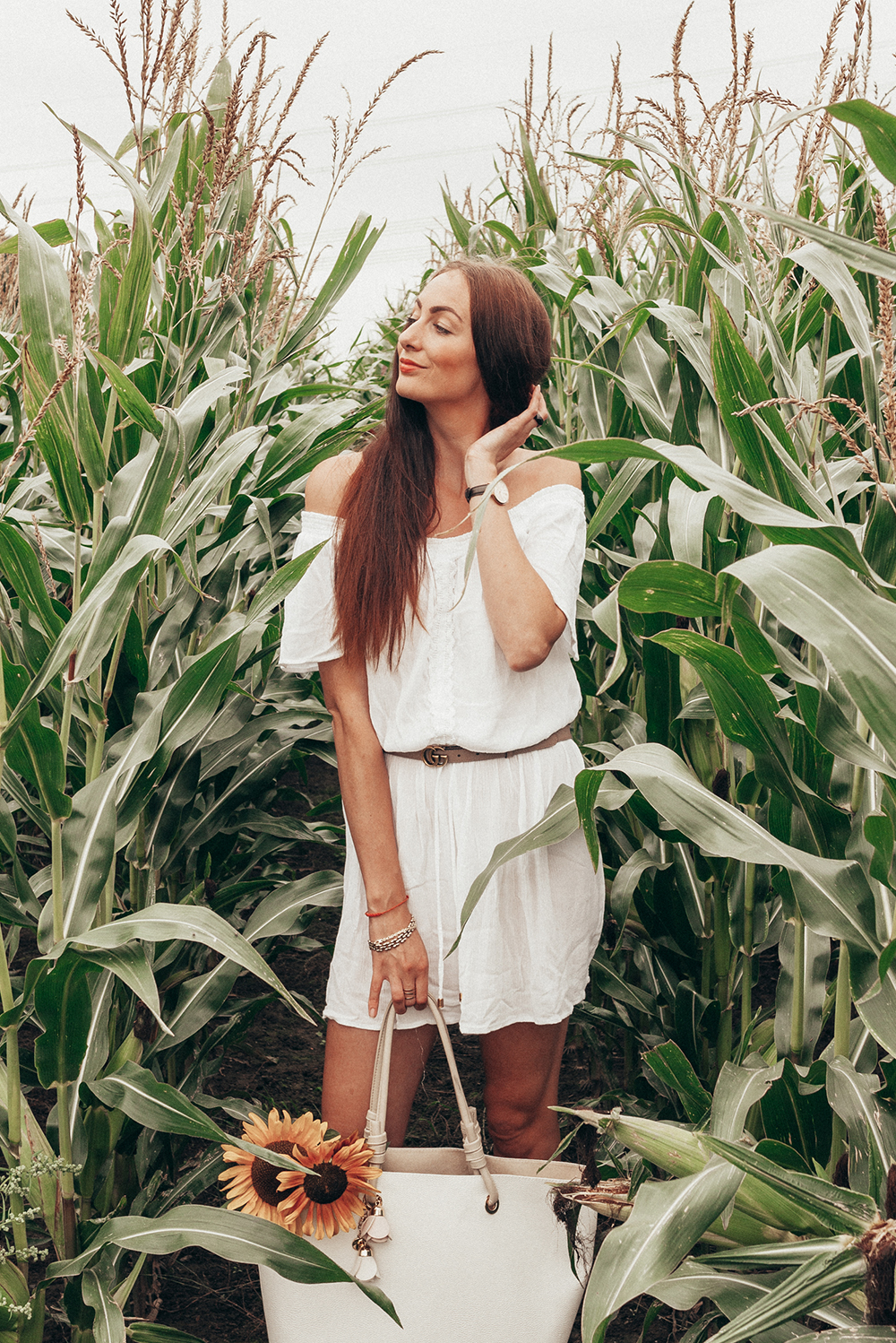 corn field Lifestyle by Linda