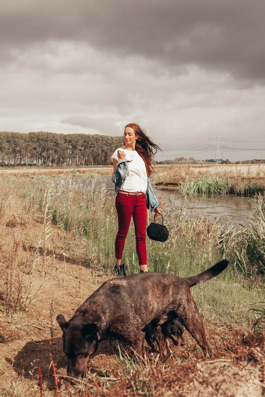 Dierendag 2017 lifestyle by linda