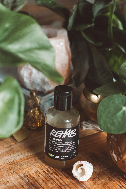 Lush vegan Haircare Rehab shampoo