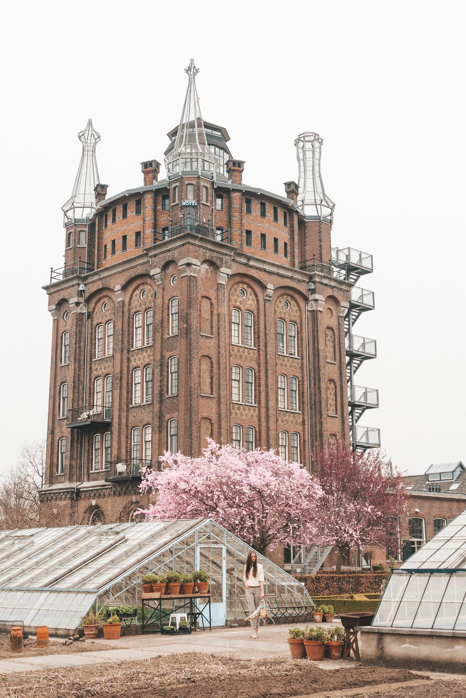 Villa Augustus bloesem Dordrecht