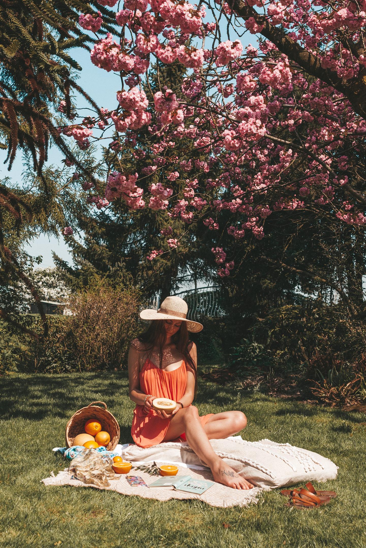 boho spring picnic vegan