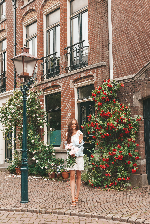 Rozenhof Dordrecht