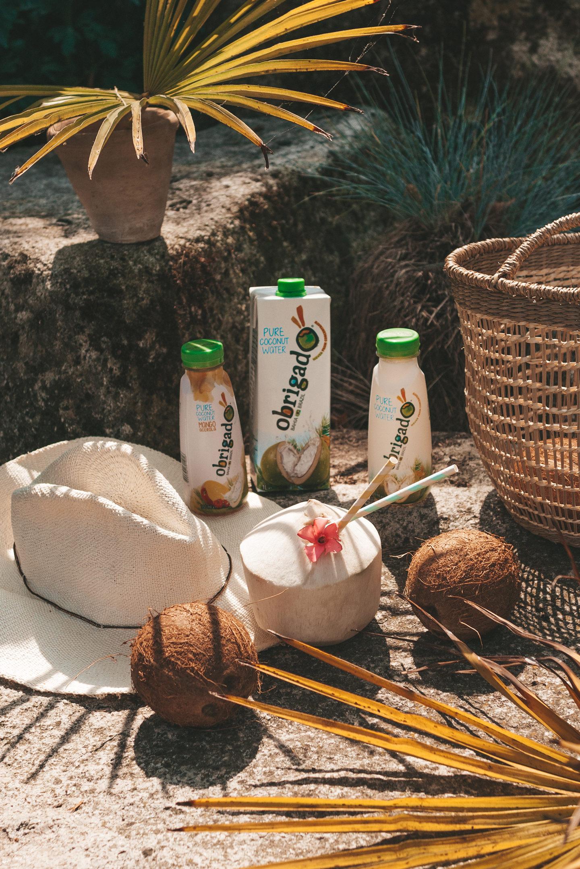 Obrigado de voordelen van kokoswater