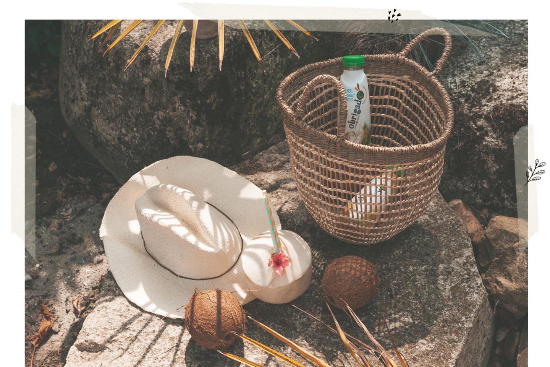 De voordelen van kokoswater Obrigado