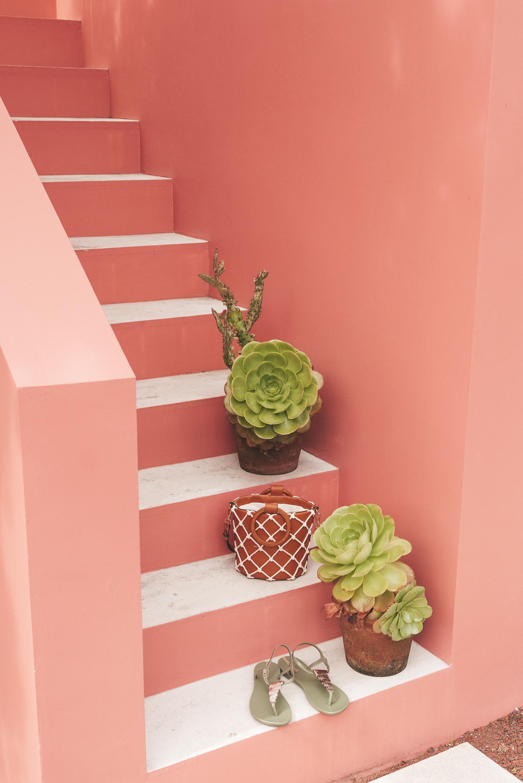 Pink House Azores São Miguel Ponta Delgada