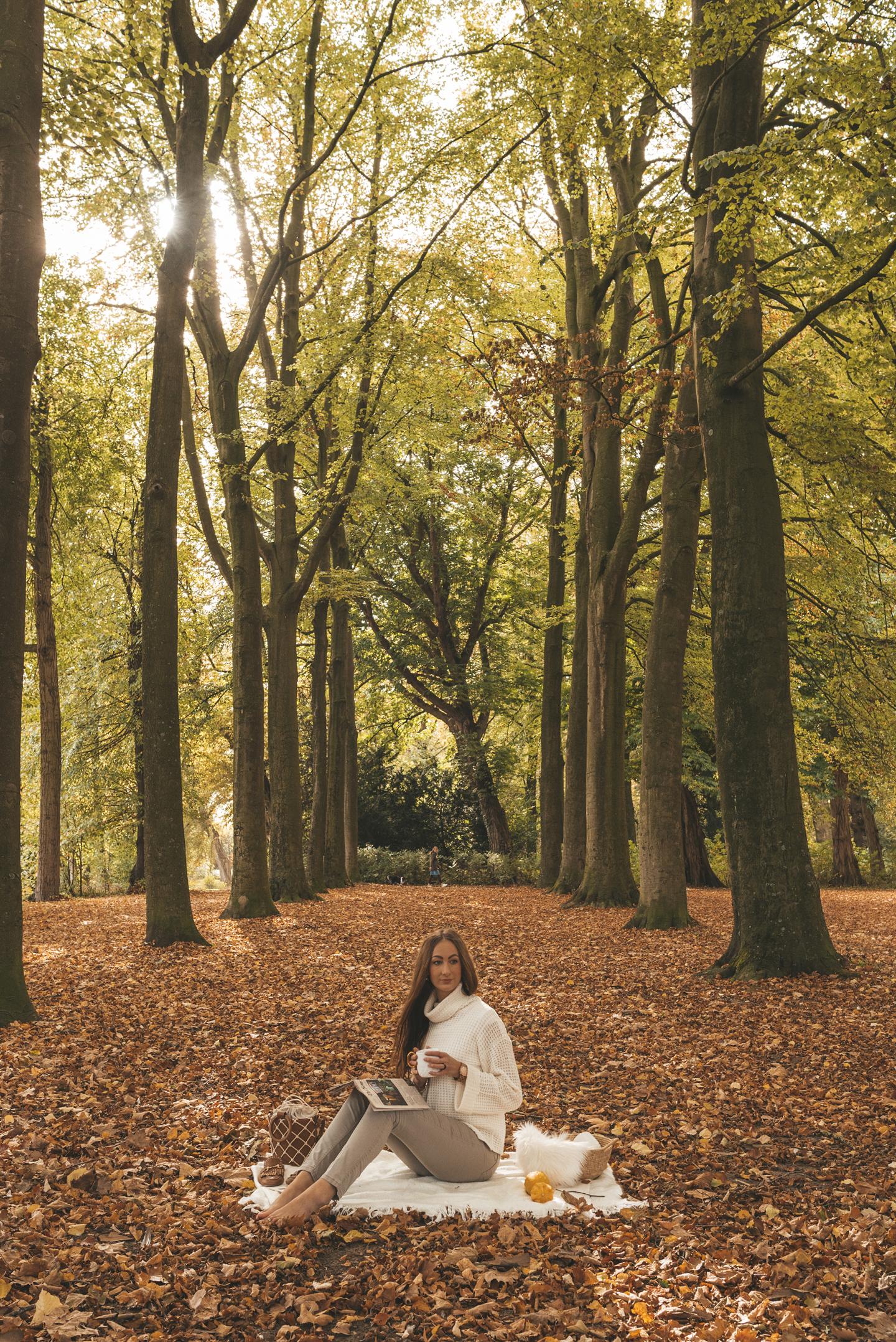 Dubbelsteynpark Dordrecht herfst