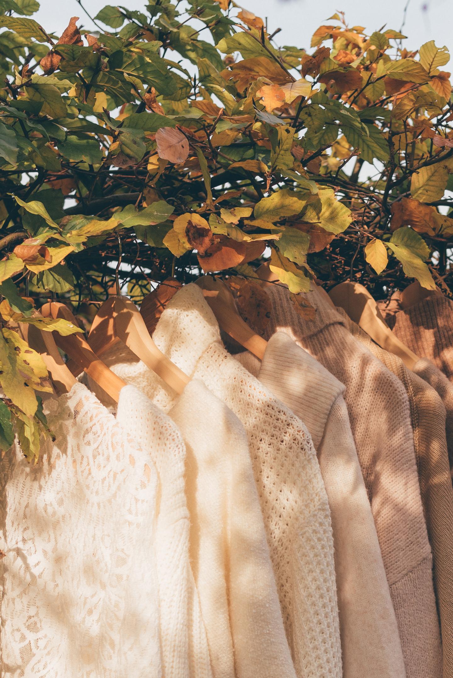 Favorite knitwear