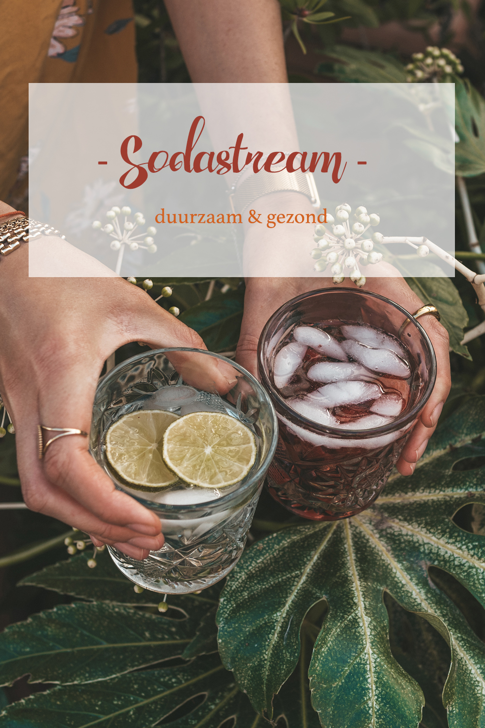 SodaStream Spirit One Touch Zwart Linda's wholesome Life Pinterest