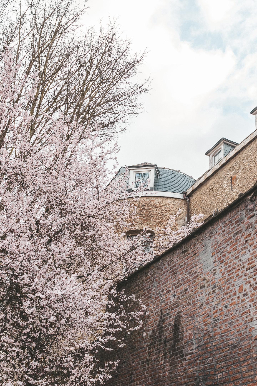 Lille Frankrijk Rijsel city trip lente spring france