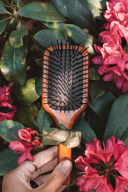 Aveda mini Paddle Brush