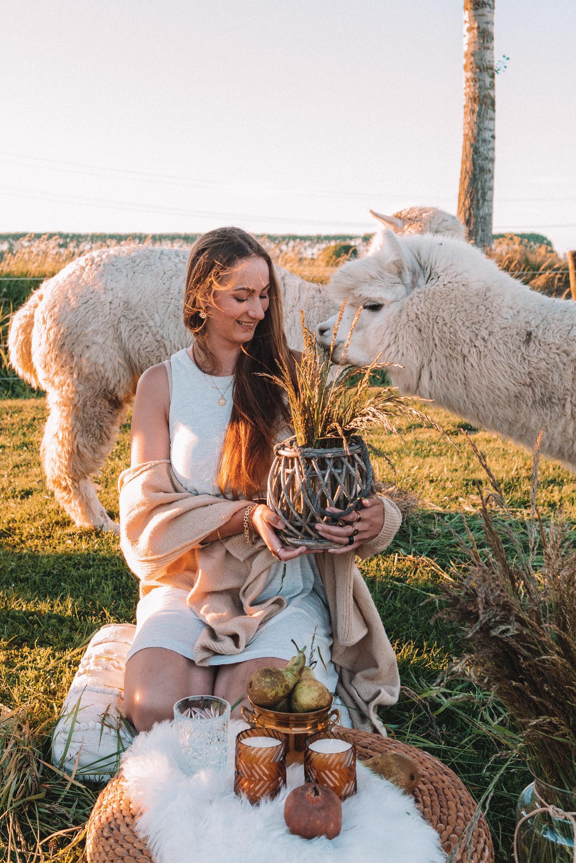 Linda's Wholesome Life alpaca picnic duurzame lifestyle blog