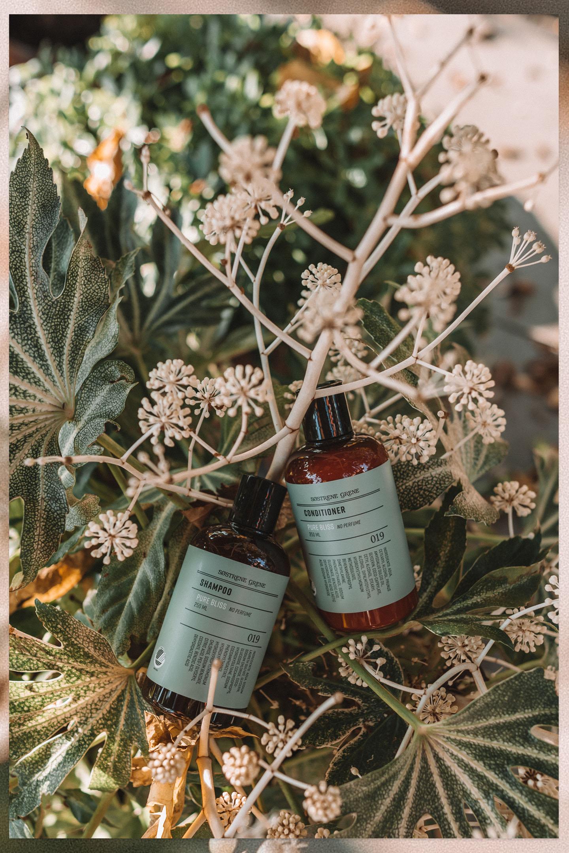 Søstrene Grene Pure Bliss shampoo conditioner