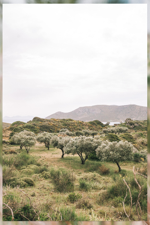 Natuur Lipsi Griekenland