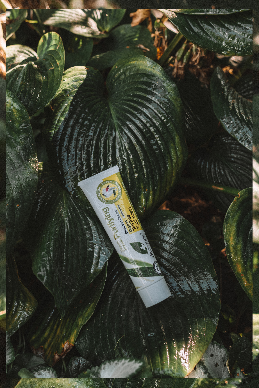 Dr. Organic Tea Tree Toothpaste
