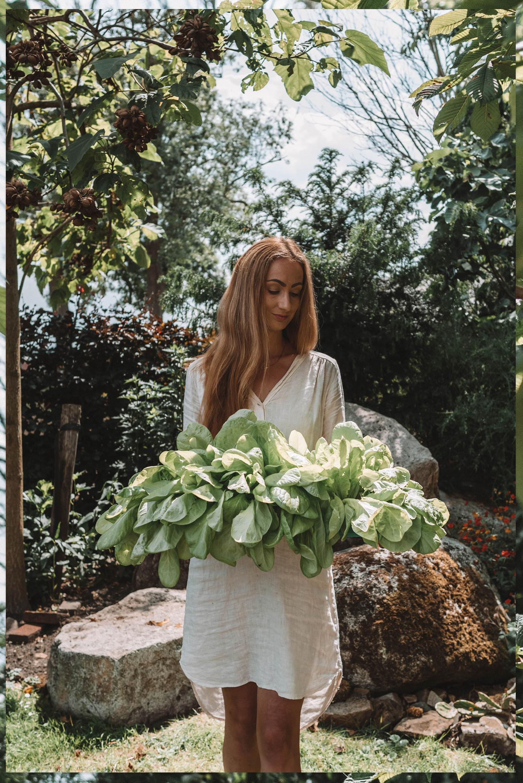 juli moestuin Linda's Wholesome Garden