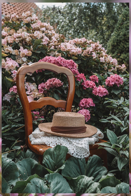 Dit kun je in augustus in de tuin doen Linda's Wholesome Garden